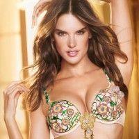 Victoria's Secret создали бюстгалтер за 2,5 млн долларов
