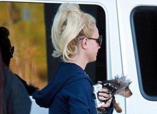 Бритни Спирс вновь ходит без белья и в рваной одежде