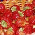 Как самому отстирать пятна от ягод, кофе и мороженого?
