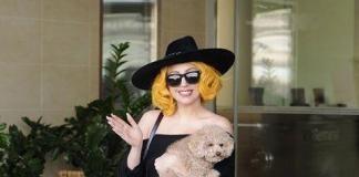 Леди Гага беременна или просто растолстела?