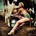 Польза цельного молока: деревенское молоко и здоровье