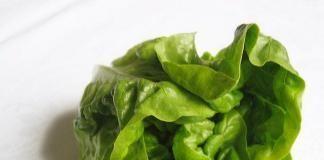 Твой идеальный салат, часть 1