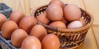 Усам Хамдия: яичная диета