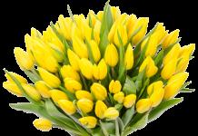 цветочные композиции из тюльпанов