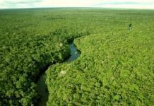 Ученые нашли доказательства существования неизвестной древней цивилизации в Южной Америке