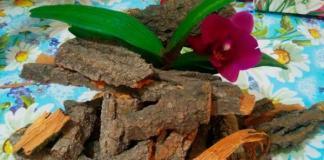Уход за самыми капризными: грунт для орхидей своими руками, подкормка и другие секреты
