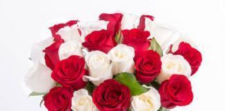Где купить красивые цветы?