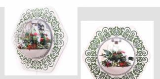 7 стильных флорариумов для твоей гостиной