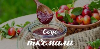 Как приготовить домашний ткемали из слив: рецепт восхитительного грузинского соуса