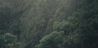 Гороскоп на неделю 2-8 июля: взятой высоте предшествует хороший разбег