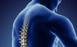 Пластырь «ZB Pain Relief»: мудрость китайской народной медицины для здоровья суставов