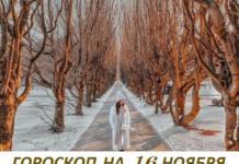 Гороскоп на 16 ноября: каждый имеет право на свои странности