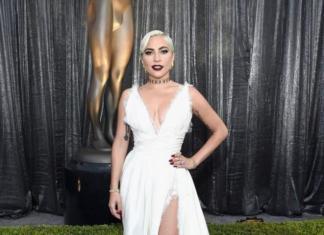 """Что любит Леди Гага: самые интересные факты про номинанта на """"Оскар — 2019"""""""