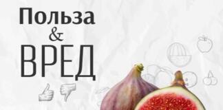 Все, что необходимо знать про инжир: кому нельзя есть этот фрукт
