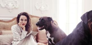 В ногу с трендами: Анджелина Джоли завела свой YouTube-канал