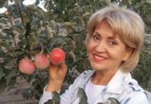 Полиция Киева: теща Притулы задержана за ДТП. Какое сейчас состояние пострадавшей мамы с ребенком