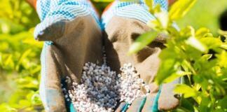 Комплексные удобрения для огорода и сада