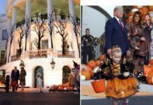 Хэллоуин на подходе: Дональд и Мелания Трамп задают тон празднику в Белом доме