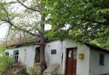 Могилевская, Матвиенко, TAYANNA, Jerry Heil и другие звезды соберут средства на восстановление дома Леонтовича